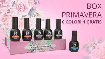mini-box-primavera-3
